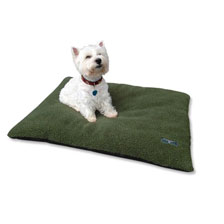 Dogbed von Wellington of Bilmore